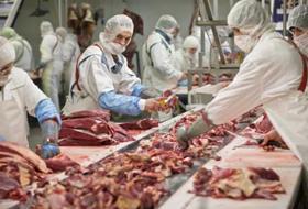 Continua l'interesse di Confconsumatori per lo scandalo carne equina