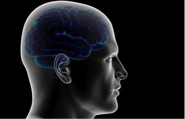 Torino: neurochirurgo promette trapianto di testa entro 2 anni