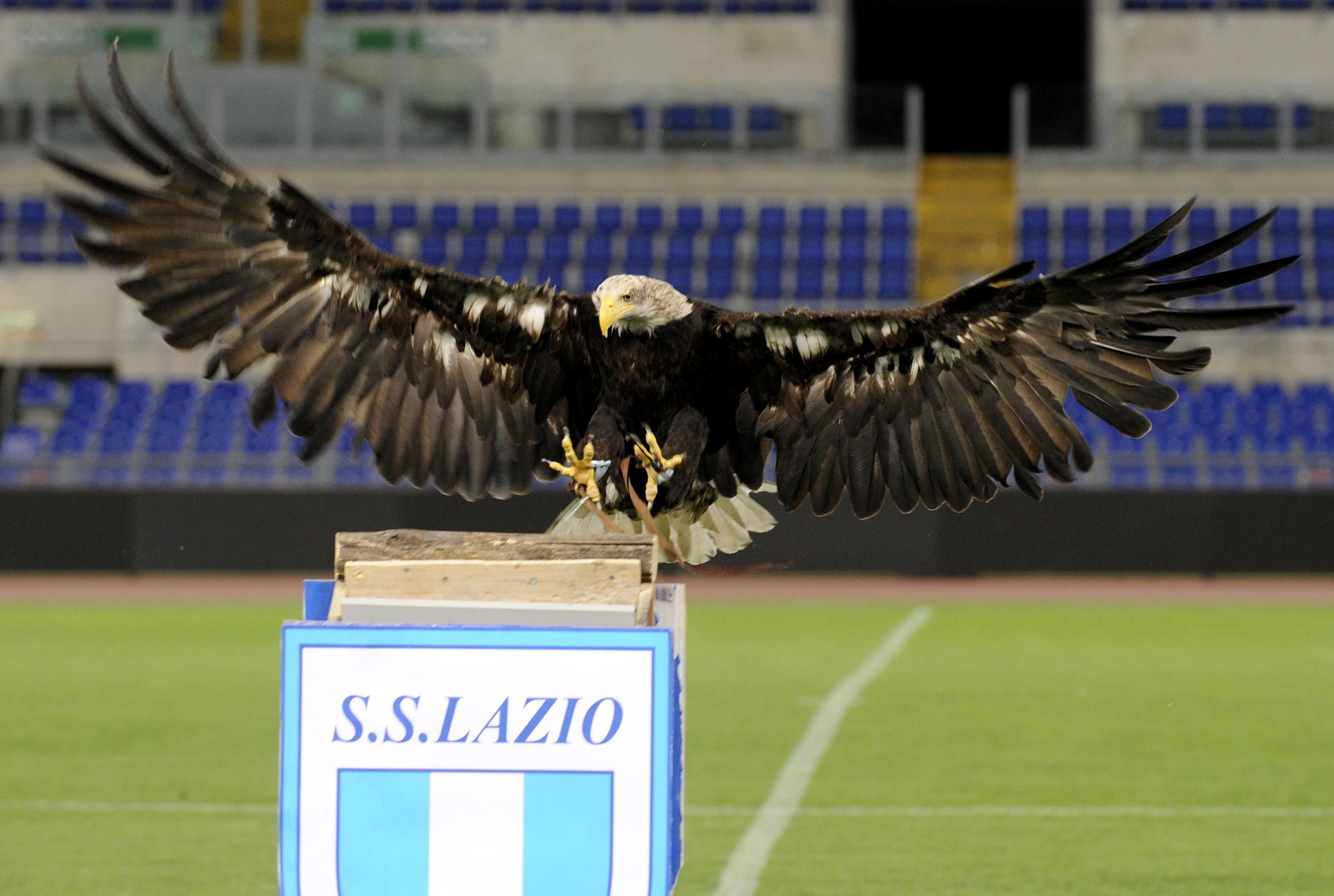 Il riscatto dell'Aquila: 3 gol al Chievo