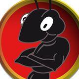"""""""La corte della formica"""" IX edizione, è già successo"""