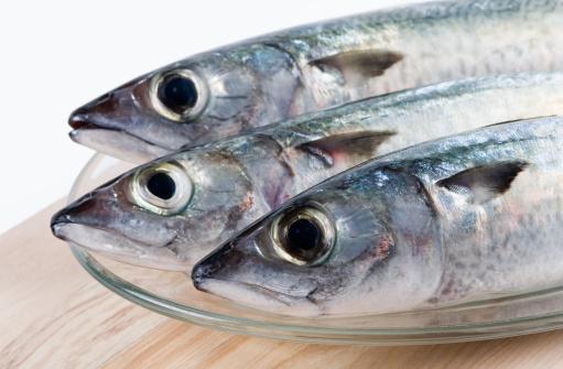 Il pesce in gravidanza fa bene