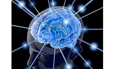 La teleriabilitazione del paziente affetto da ictus cerebrale