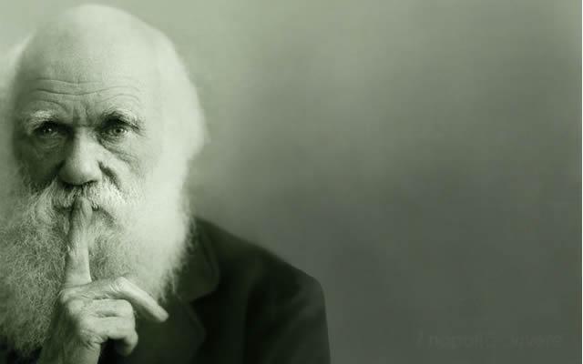 """""""DARWIN DAY"""" XI edizione. Tutte le iniziative al  Museo di Storia Naturale"""