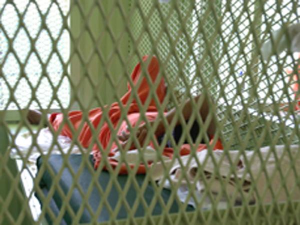 Stati Uniti: record di errori giudiziari nel 2013