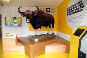 Museo-crimini-ambientali- foto-Luigi-Di-Battista