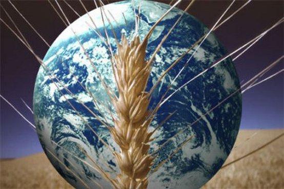 Sud America: la sicurezza alimentare mondiale minacciata seriamente dal cambiamento climatico