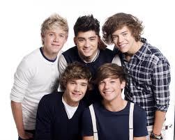 One Direction: Biglietto concerto valido sui mezzi Atm per l'intera giornata