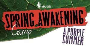 Spring Awakening diventa un campo estivo con coach d'eccezione