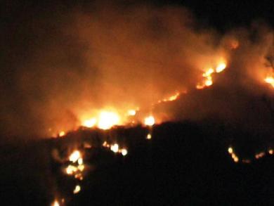 Panico ad Ischia: incendi devastano due ettari di terreno in località Forio