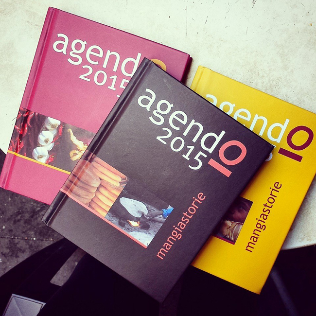 Agendo 2015. L'agenda-libro per il sociale