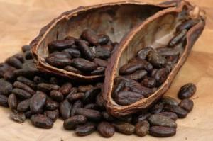 Cacao-minaccia-ebola