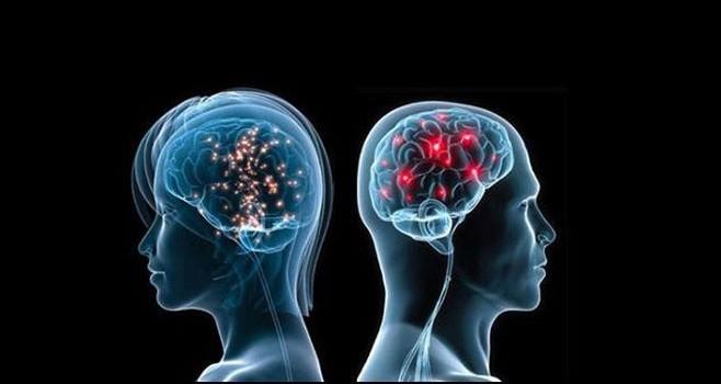 """Pontificia Accademia delle Scienze: """"Memory In The Disease Brain"""" a Città del Vaticano"""