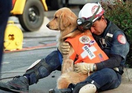 I cani dell'11 settembre. Eroi sconosciuti e indimenticati