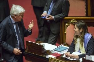Boschi-Senato