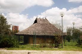 Fidene:  la capanna protostorica  con l'esemplare del gatto domestico più antico d'Italia –  Il degrado dell'area