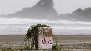 Uno dei numerosi detriti che sono giunti sulla spiaggia dell'isola di Vancouver dopo lo tsunami giapponese Foto: JONATHAN HAYWARD