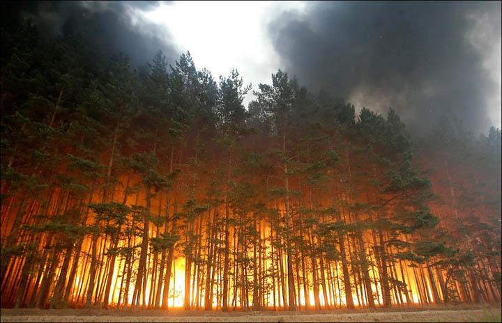 Incendi in Siberia, più di 100mila ettari in fiamme
