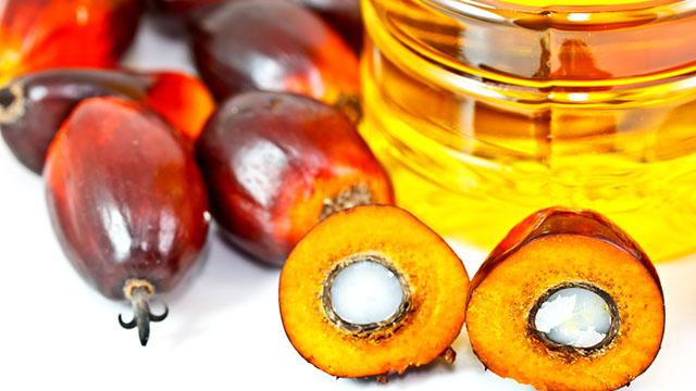 Olio di palma; Basiron (MPOC): Bene Risoluzioni del Parlamento italiano