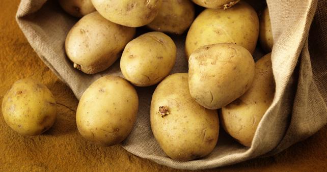 Un mondo senza patata