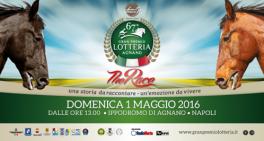 67-gran-premio-lotteria-264x141