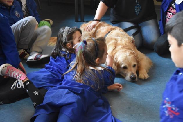 Studenti, infermieri, cani: tutti insieme appassionatamente contro il bullismo
