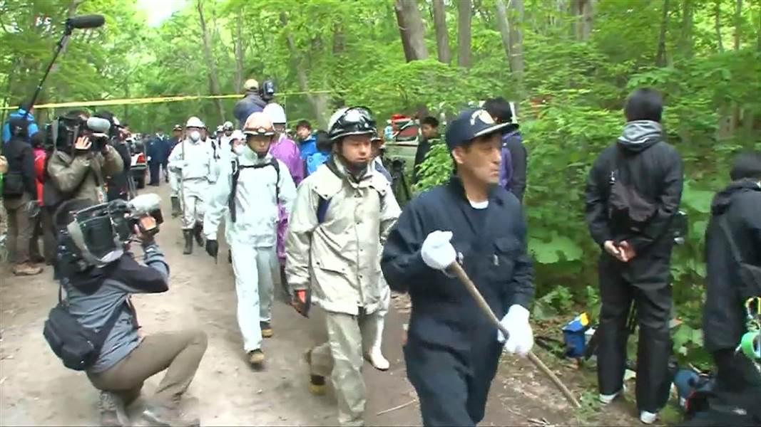 Giappone: sano e salvo il bambino abbandonato nel bosco per punizione