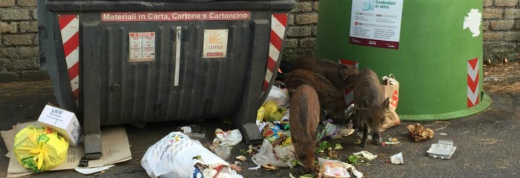 Rifiuti per strada a Roma e in Sicilia, schiaffo ai cittadini e al turismo