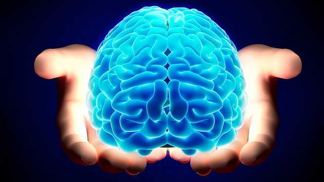 Il cervello umano e le sue potenzialità, tutto quello che c'è da sapere