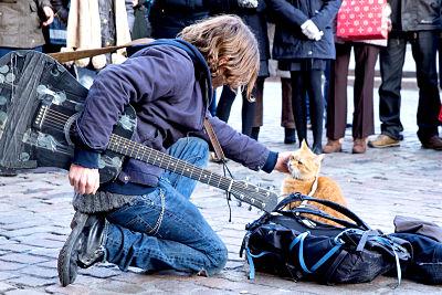 A SPASSO CON BOB | Un semplice gatto può cambiarti la vita
