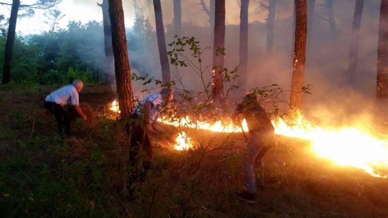 Allarme: il Vesuvio brucia! Fermiamo i piromani.