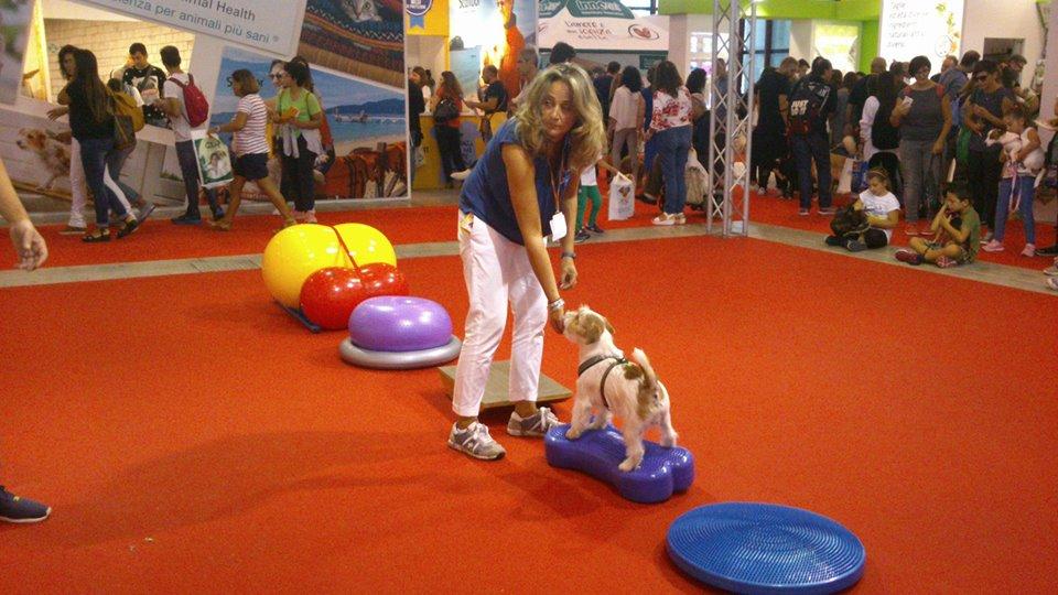 """Il cane, impariamolo a conoscerlo meglio. Alla mostra d'Oltremare 4 edizione di """"QuattroZampeInFiera."""""""