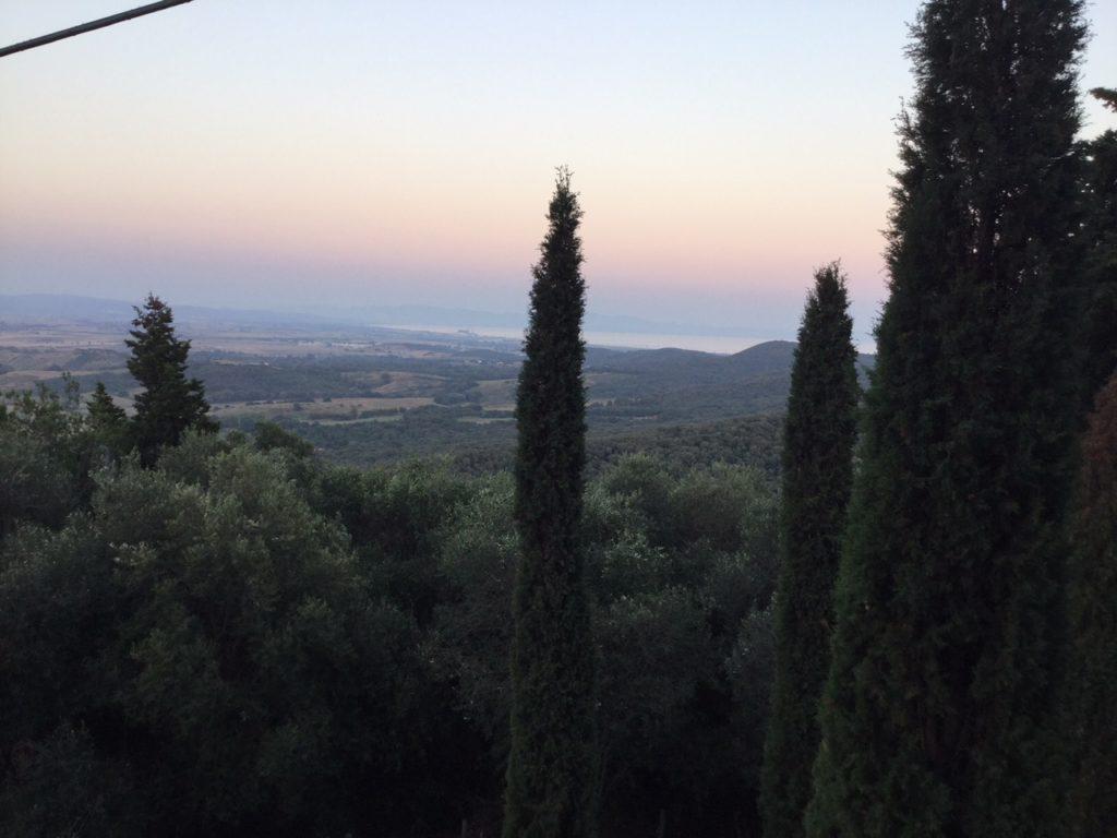Populonia panorama