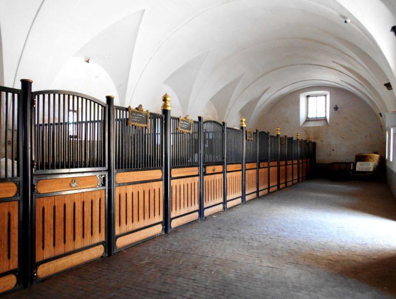 Scuderie asburgiche di Lipizza (Slovenia). Qui vengono allevati e addestrati i bianchi cavalli lipizzani. Foto di Cinzia  Albertoni