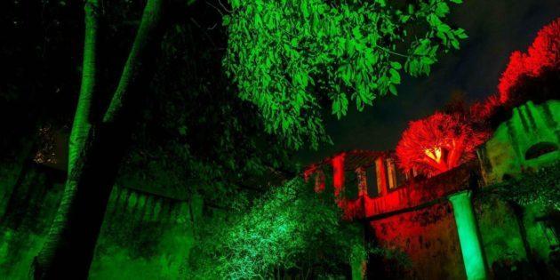 Luci d'artista e il Giardino della Minerva a Salerno
