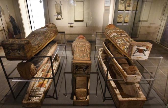 Il Museo Egizio di Torino diventerà una scuola di esperti d'arte