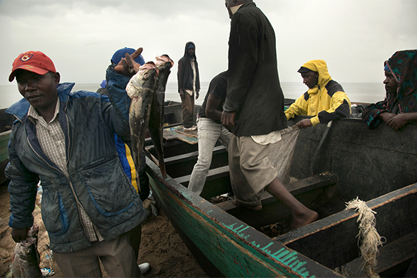 Pesce africano e asiatico: storie di degrado umano e ambientale