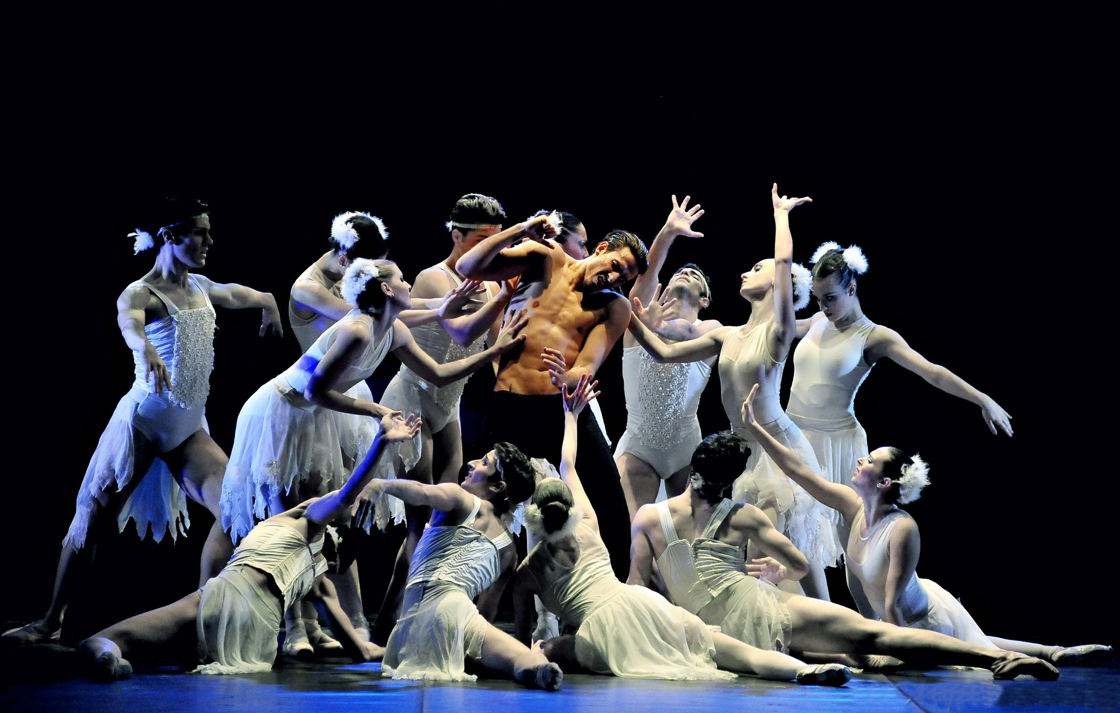 'Il lago dei cigni' il vessillo del balletto classico.