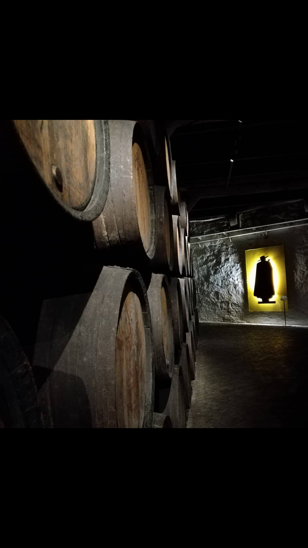 Porto Sandeman: un tuffo nella storia del celebre vino portoghese
