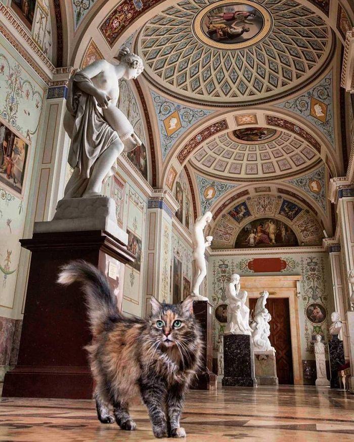 visita guidata ai musei dell'Ermitage