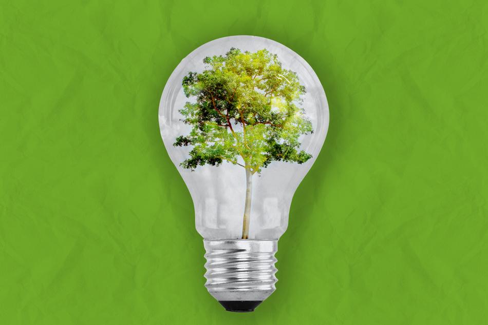 Introduzione alle energie rinnovabili. Nulla si crea, nulla si distrugge, tutto cambia